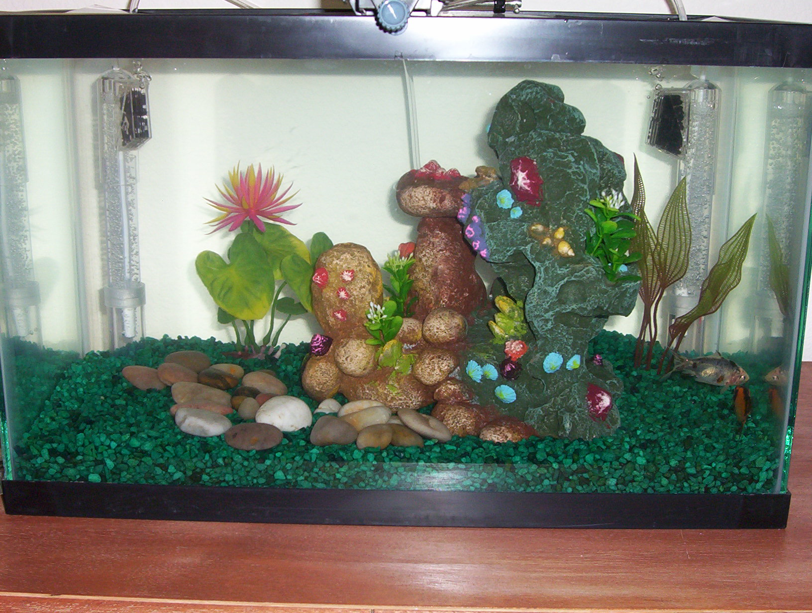 New 10 gal fish tank this should give them much more for How much is a fish tank